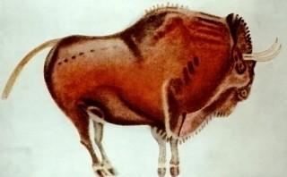 altamira_bison.jpg