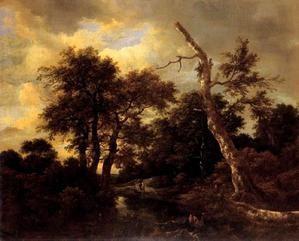 paysage de forêt marécageux,ruisdael,peintre néerlandais,humaniste,école paysagiste hollandaise